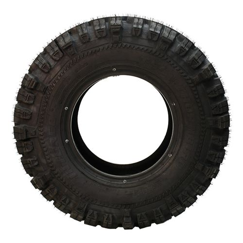 Interco TSL Thornbird LT29/10.50--15 T316